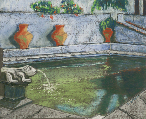 The Old Pool at Sao Paolo