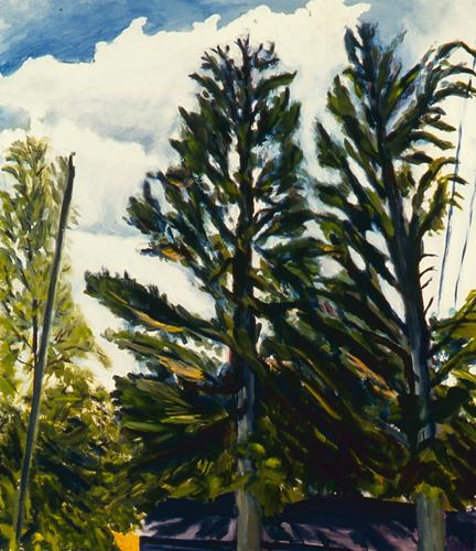 Oxbow Trees