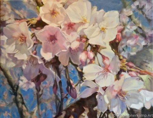 """Sunkissed Cherry Blossoms"""