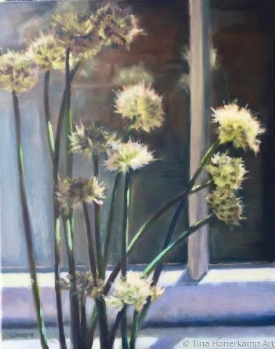 Alliums Aglow