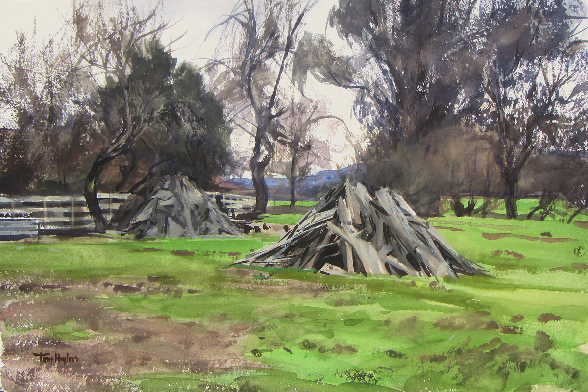 Sonoma woodpiles (large view)