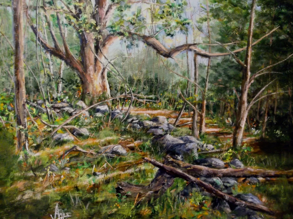 Nature Walk (large view)