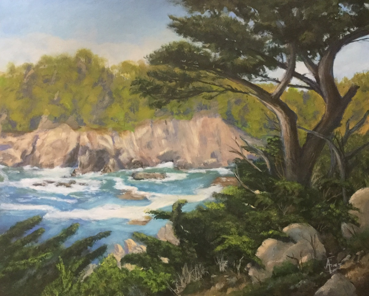 Point Lobos, Monterey, CA (large view)