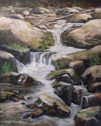 Adirondack Mountain Stream