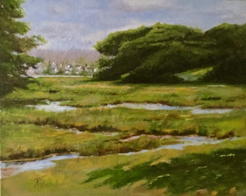Salt Marshes, WELLFLEET, Cape Cod