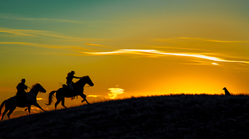 Cowboys Chasing the Sun