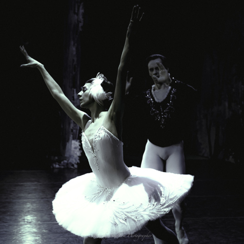 Swan Lake  by Timothy Needham - Photographer