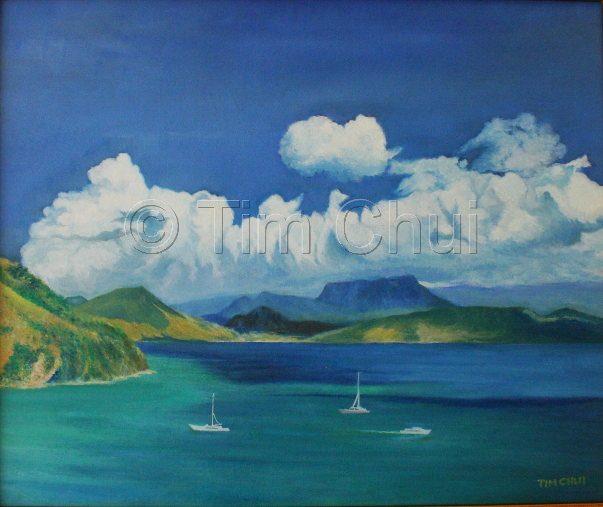 St. Kitts & Nevis Island (large view)