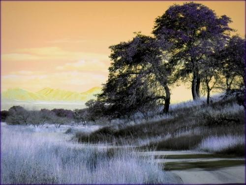 Treelicious 10 (large view)