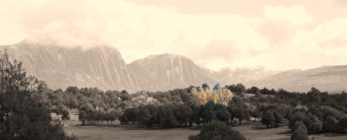 LOS BRAZOS MOUNTAIN II (large view)