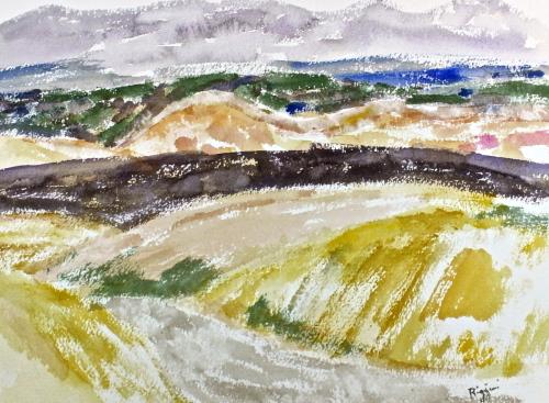 Gray Landscape, New Mexico