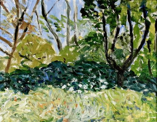 May Landscape