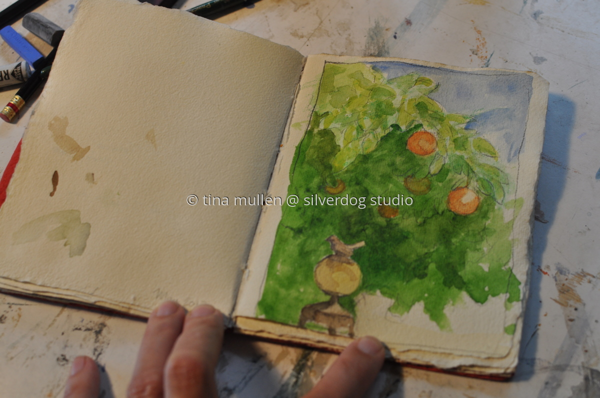The Backyard Book - orange tree (large view)