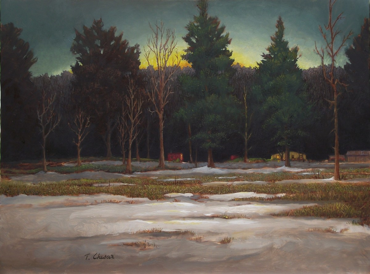 """""""Snowfield"""" (large view)"""