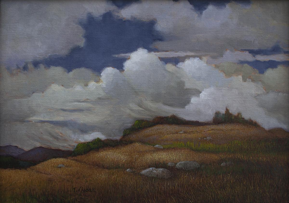 Coastal Mountain Preserve (large view)