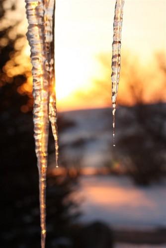 Icecicle Sunrise by Tom Rudkin