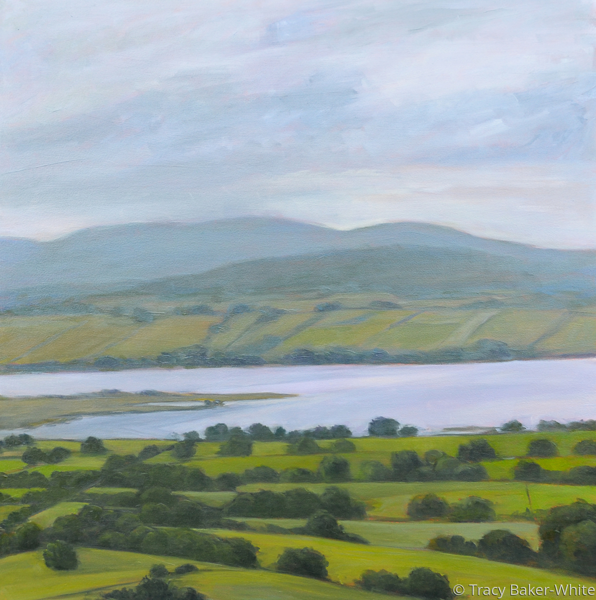 Over Carrowmore to the Ox Mountains (large view)