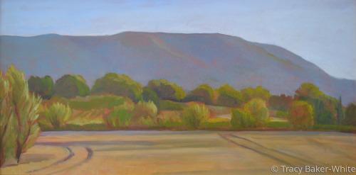 Ripening Wheat II by Tracy Baker-White