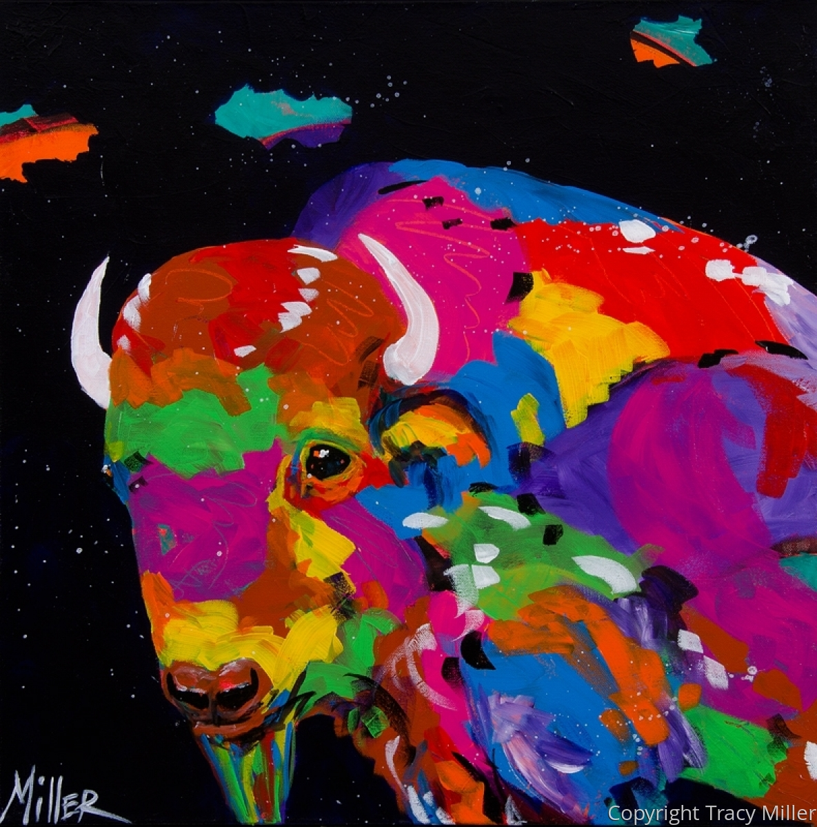 Buffalo and Midnight Sky (large view)