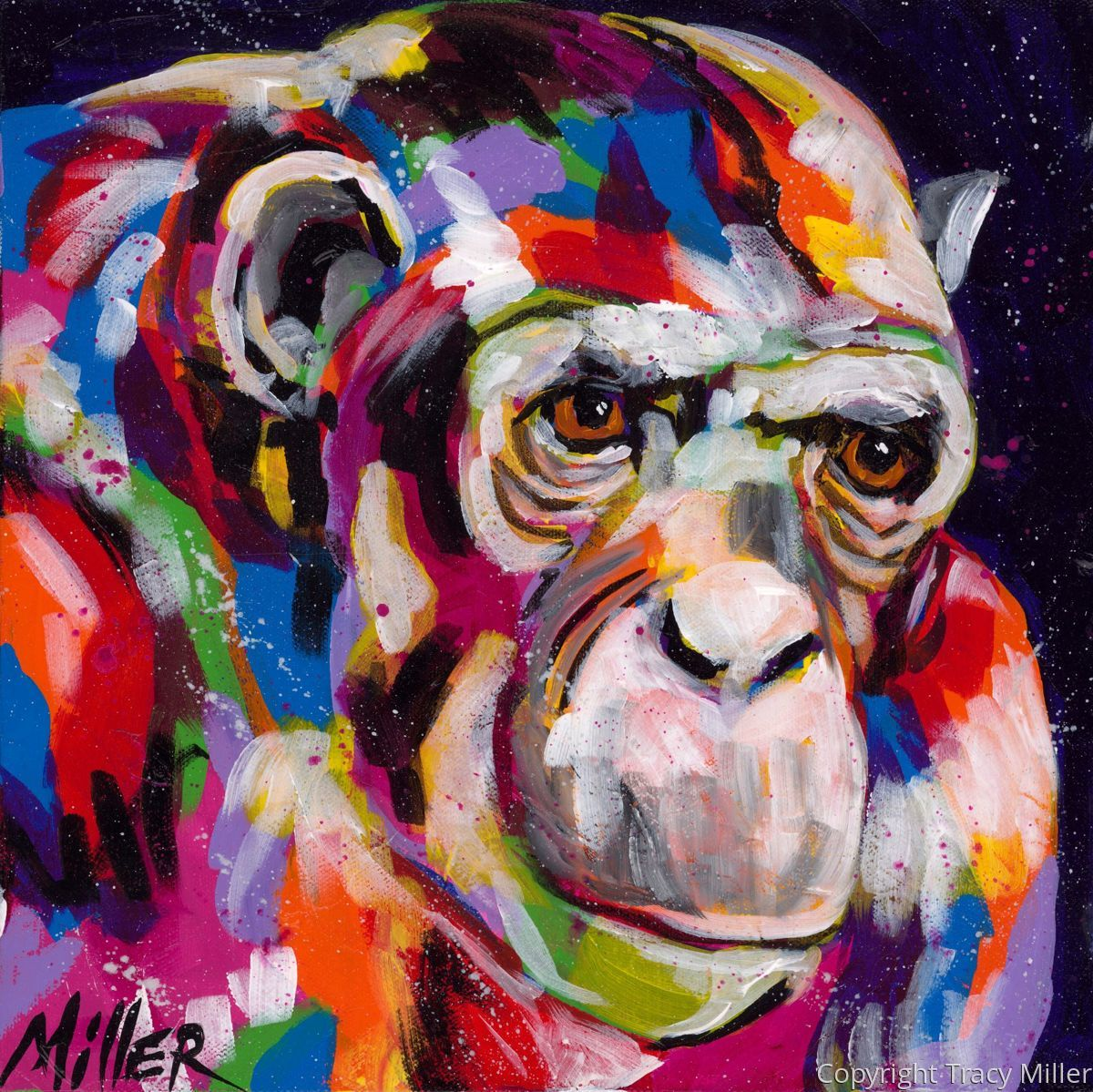 Old Man Chimp (large view)