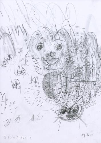 drawing 093010i