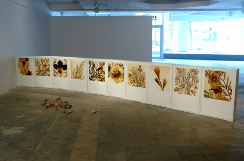 Border (installation view 2 ) by Thelma Rosner