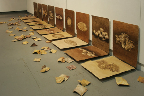 Testimony (installation view) (large view)