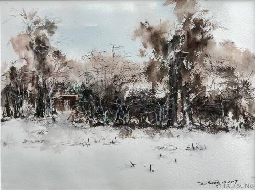 Mom's garden   by TAO SONG