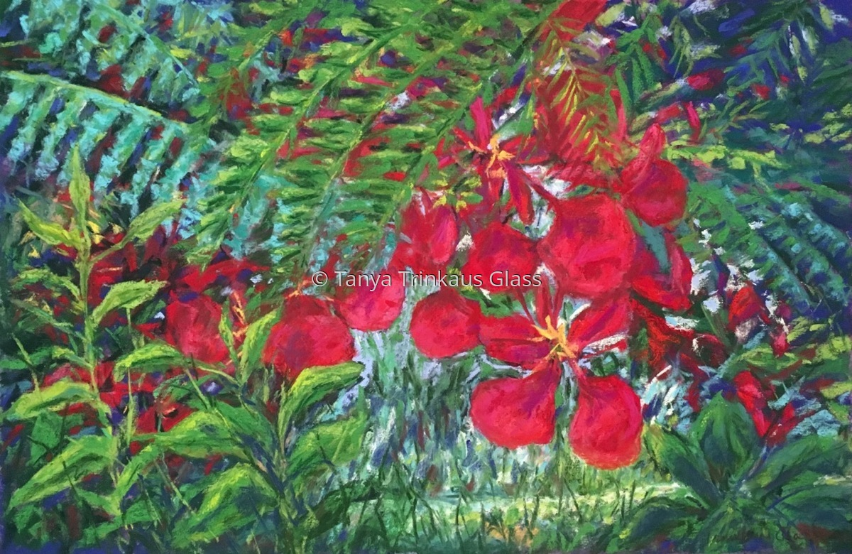 Among the Poinciana Lofts. (large view)