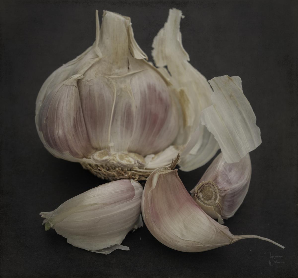 Garlic-7640 (large view)