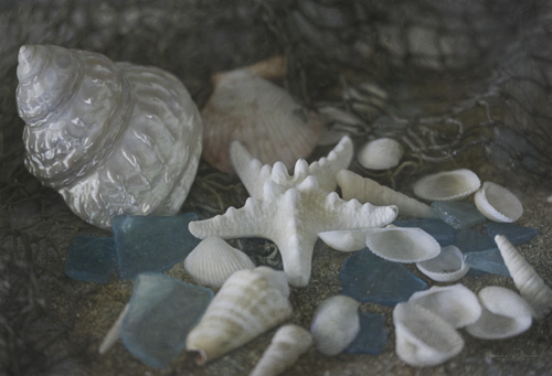 Sand, Shells, And Sea Glass 9870