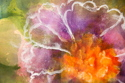 Frosted Blooms (detail) (thumbnail)