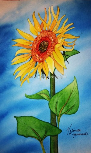 Sunflower by Melinda E.