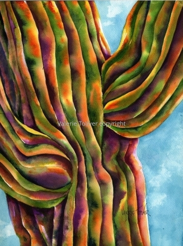 Velvet Saguaro