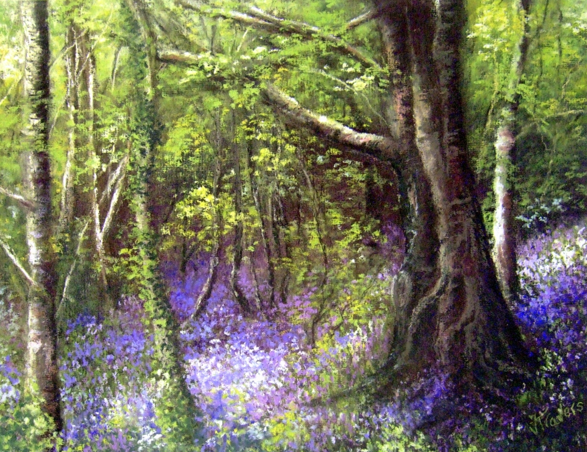 valerie travers artist, blue bell wood, pastel, landscape, prints available in various sizes (large view)