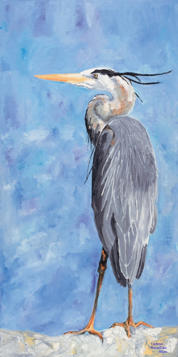 Great Blue Heron (large view)