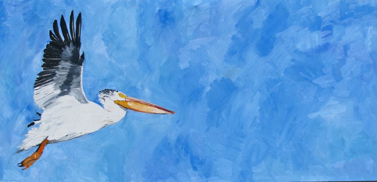 White Pelican (large view)