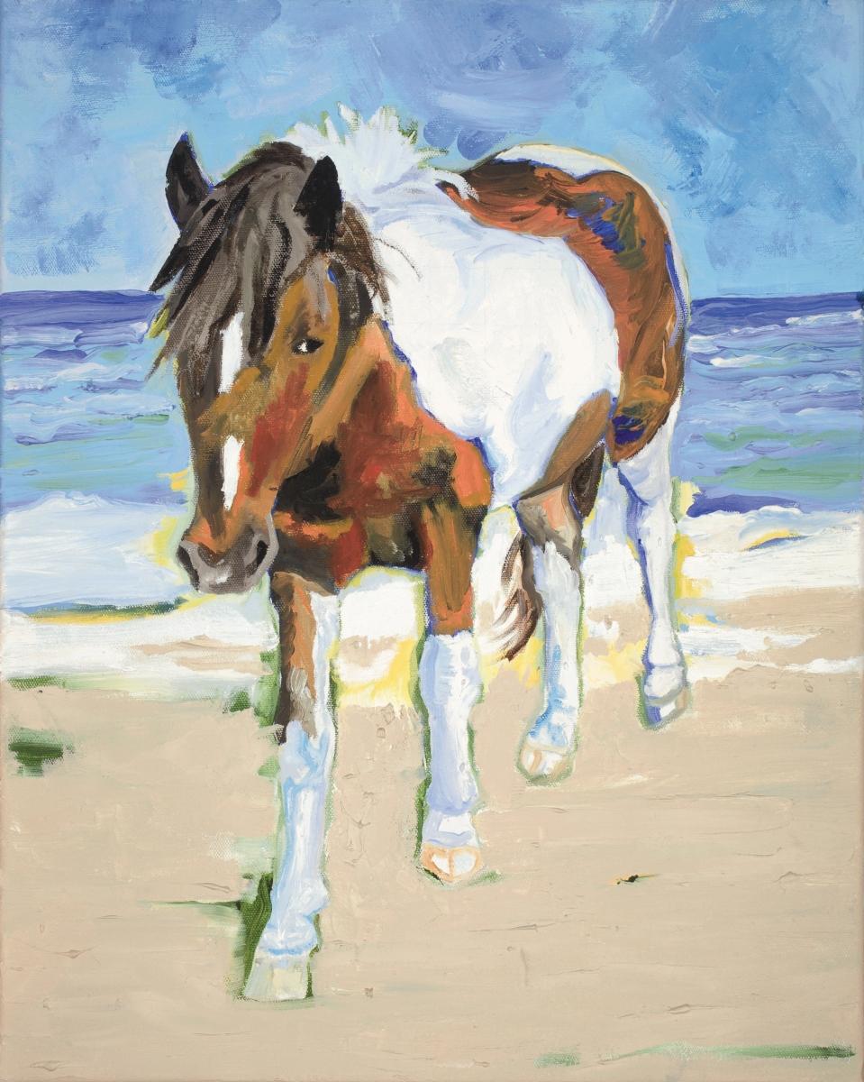 Assateague Pony (large view)