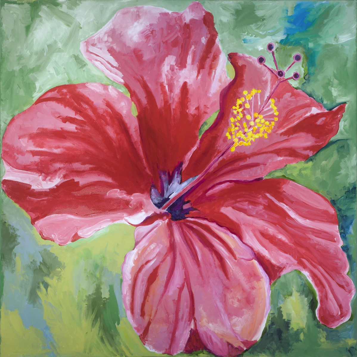 Red Hibiscus (large view)