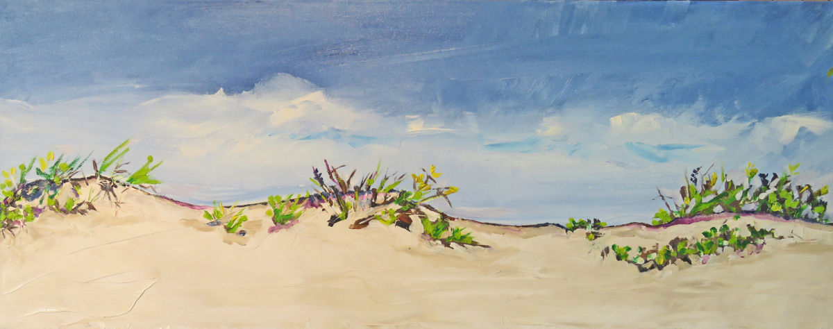 Padre Island Dunes (large view)