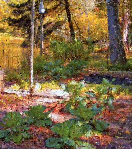 In Janet's Garden