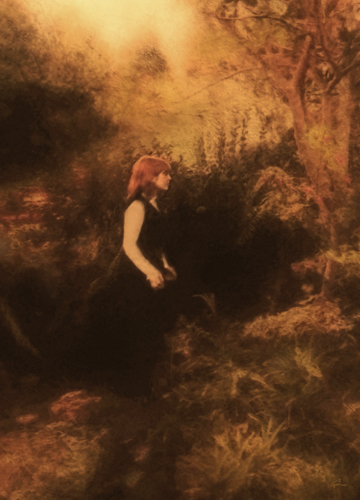 Marci In a Golden Landscape