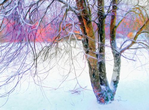 The Winter Sentinel