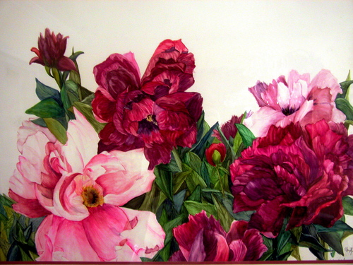 Burgundy and Pink Peonies (large view)