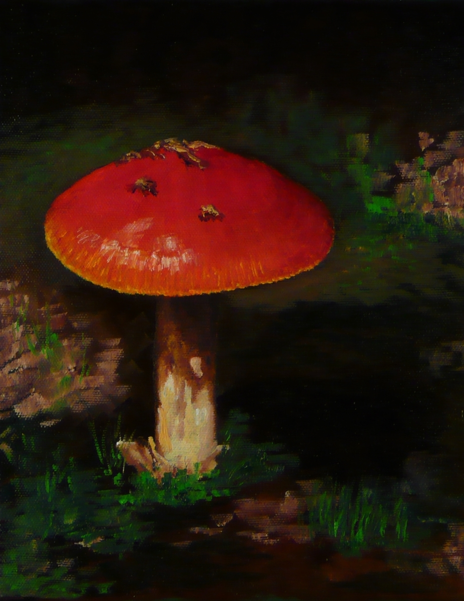 L. Johnson Mushroom (large view)