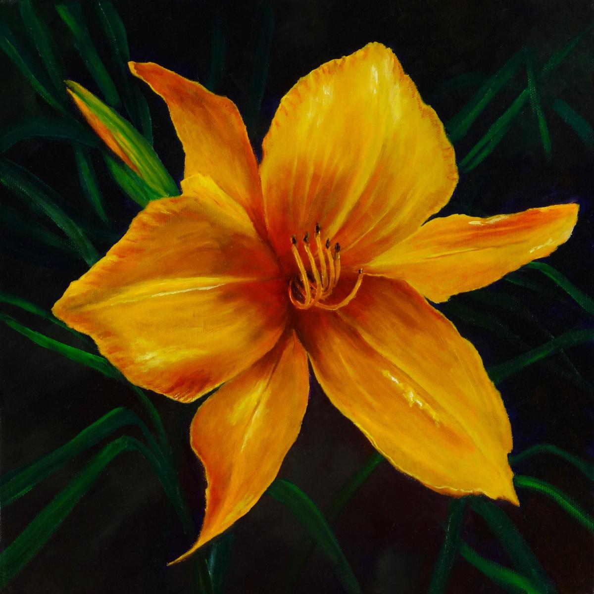 Yellow Daylily (large view)