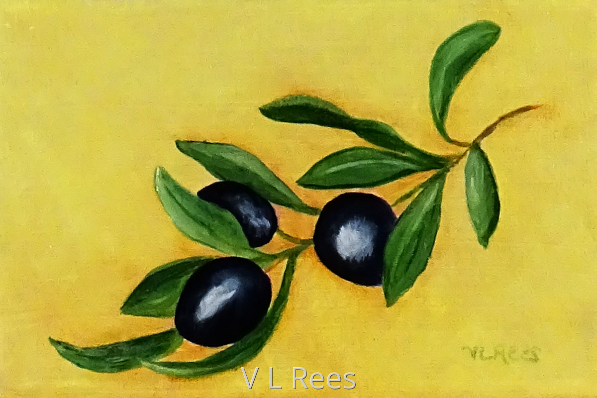 Olive Branch (large view)