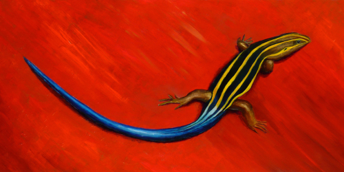 Tale of the Skink (large view)