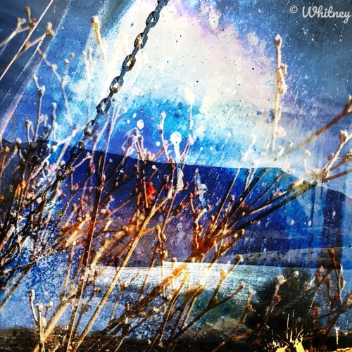 Digital Photographic - Metallic landscape by Whitney Hessong - PEACEFUL PACIFIC NORTHWEST PHOTOGRAPHY