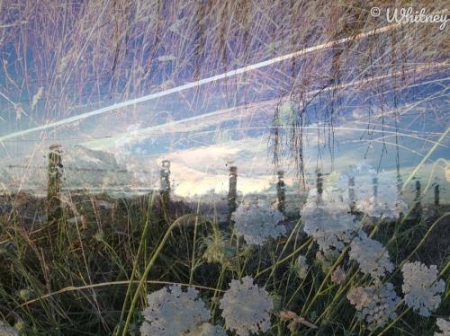 Digital Photography Raining Blue Drive